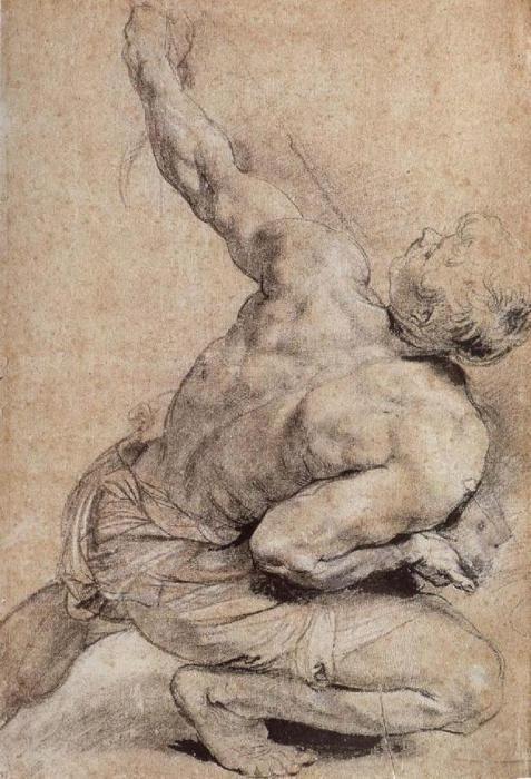 Pencil Sketch of a Man's Back    Peter Paul Rubens