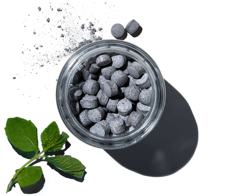Mint Charcoal 4 Month Subscription Biodegradable