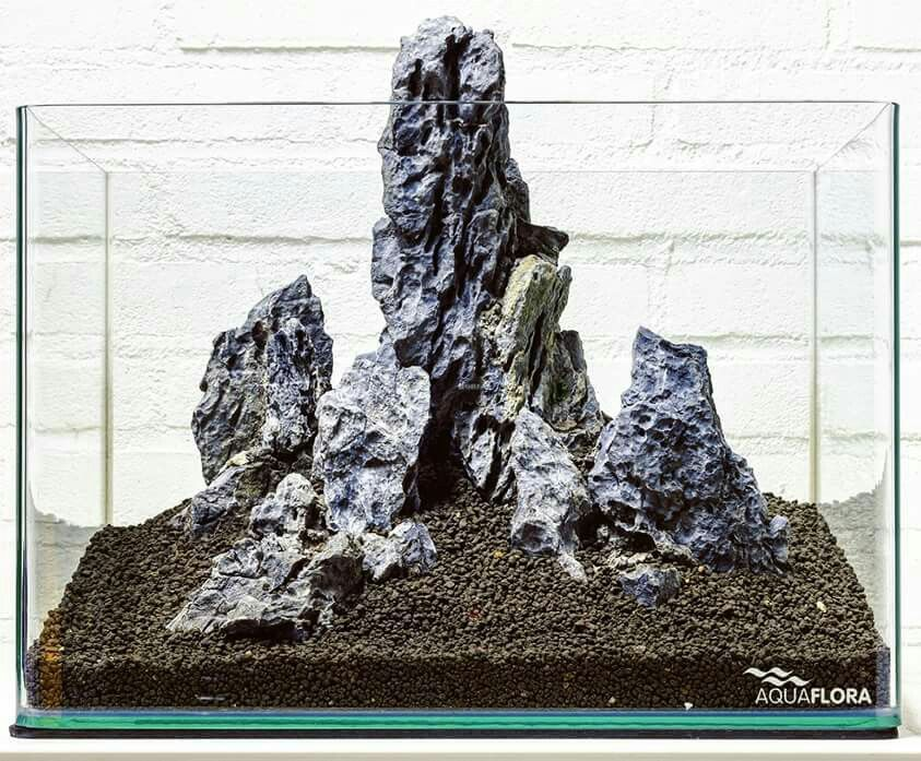 Explore Landscape Rocks, Aquascaping And More!