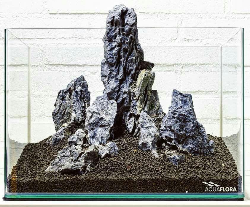 Explore Landscape Rocks, Aquascaping And More!