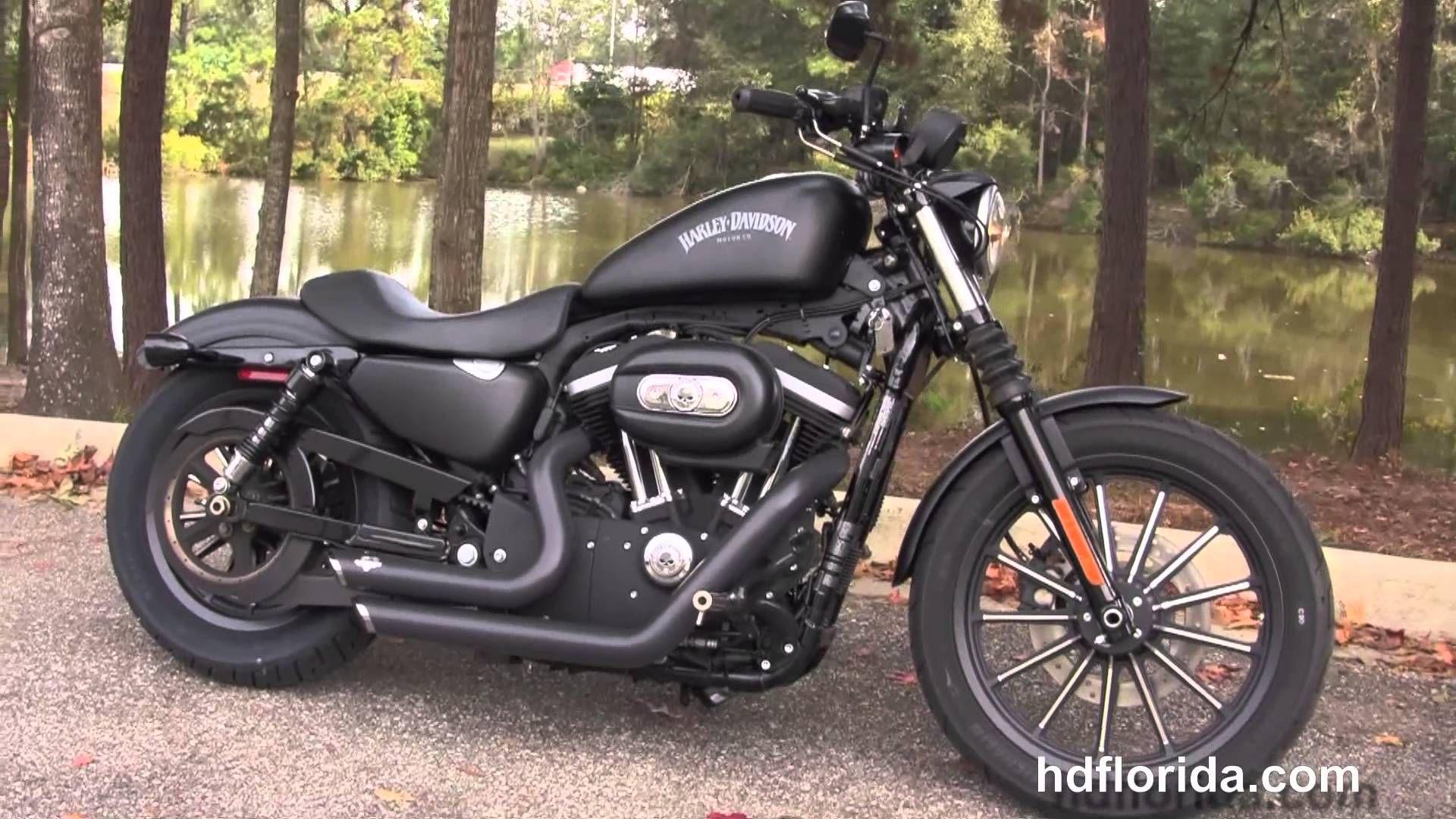 Harley Davidson Iron 883.   Cars and motorcycles   Pinterest ...