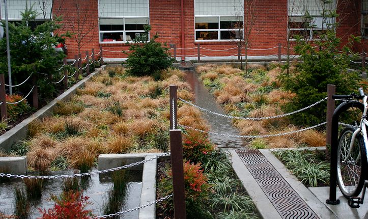 Mount Tabor Middle School Rain Garden, Portland, Oregon. Design By