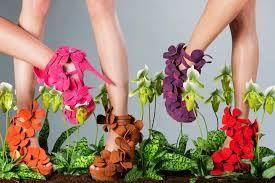 Planten en Mode - orchid shoe jan jansen - meer planteninspiratie op www.mooiwatplantendoen.nl