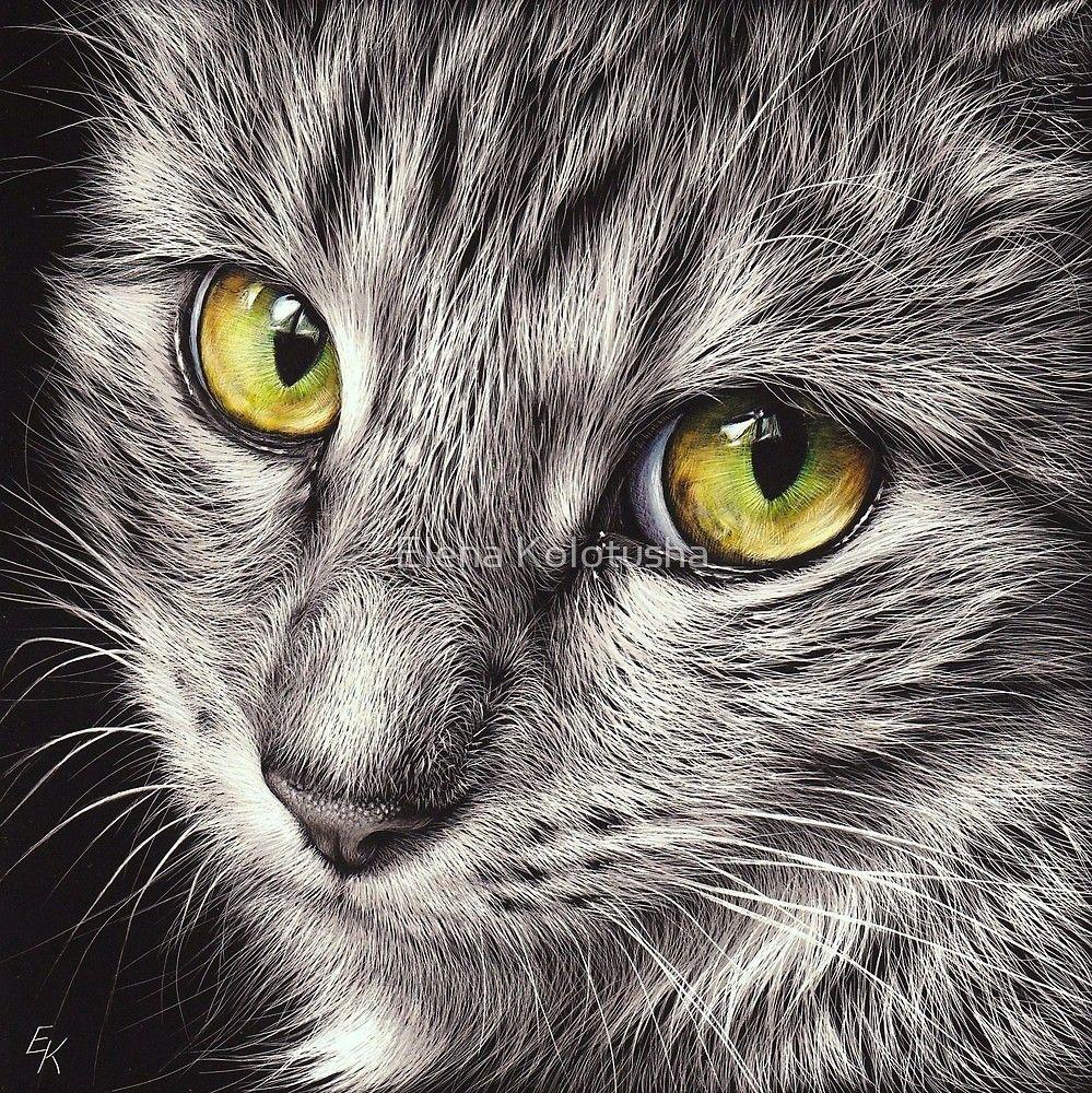 « The look » par Elena Kolotusha Arte de mascotas, Gatos