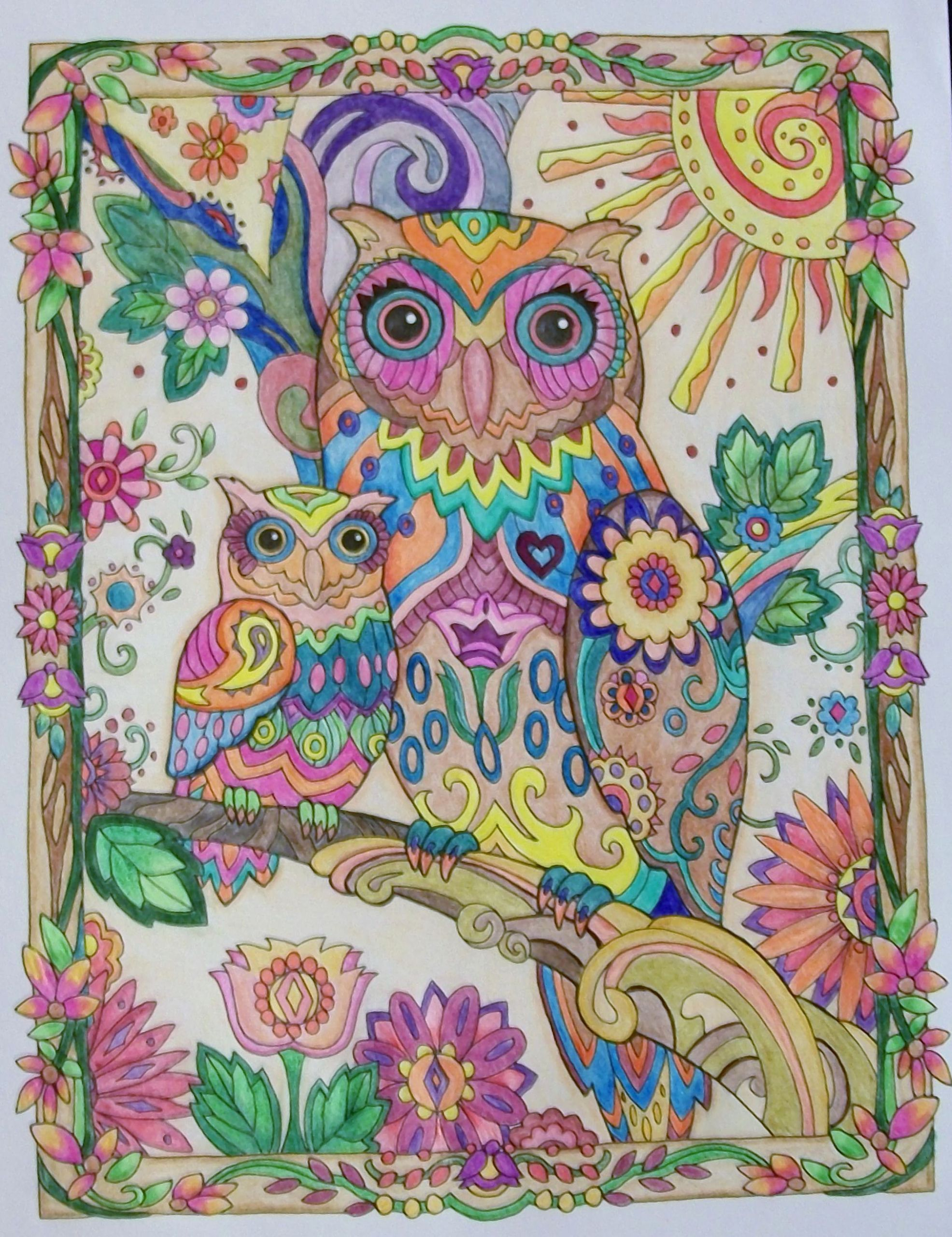 Creative Haven Owls Coloring Book Beautiful From Owls A Creative Haven Coloring Book Coloring Book Art Animal Coloring Pages Coloring Books