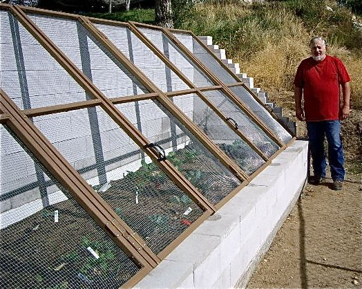 my husband jeff built this solar cold frame and we grew chard kale