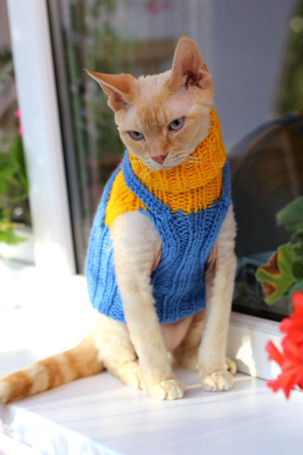 Your Place To Buy And Sell All Things Handmade Small Dog Sweaters Cat Sweaters Knitted Cat
