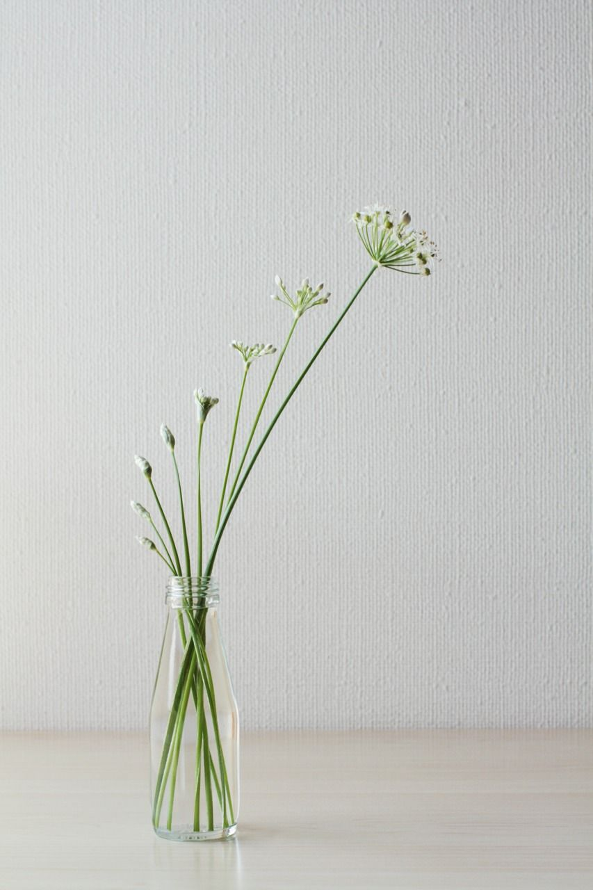 Flower Arrangement Simple Elegant Wabisabi Floral
