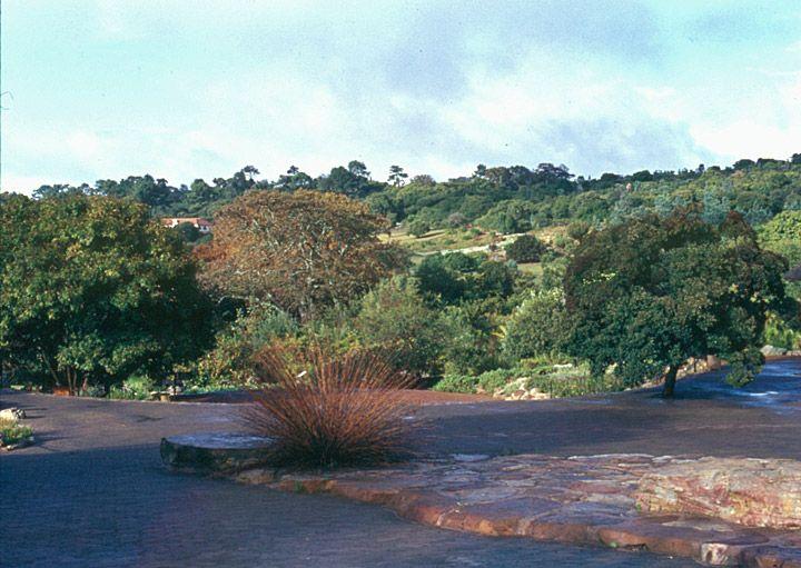 Kistenbosch, Cape Town, South Africa - Travel Photos by Galen R Frysinger, Sheboygan, Wisconsin