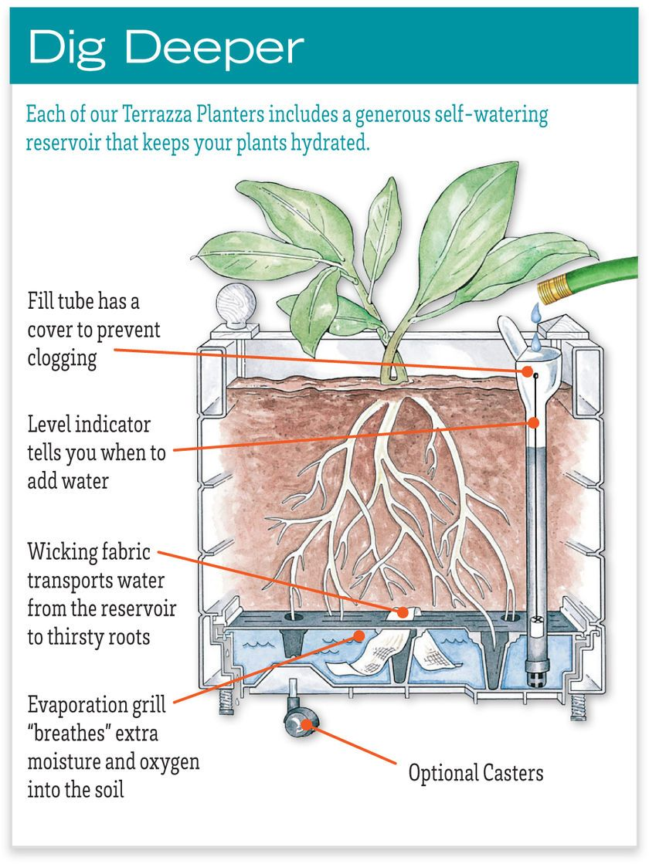 Self Watering Terrazza Trough Planters Gardener S Supply Self