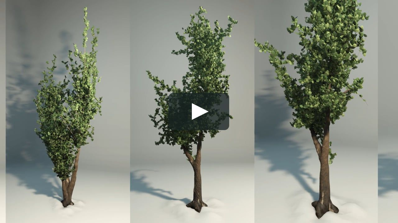 PFlow Tree Generator  3ds Max 2019 without plugins  by Igor