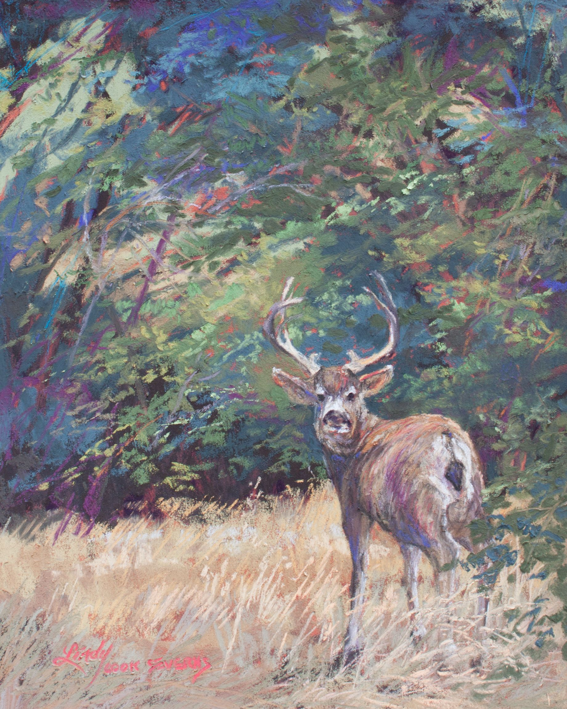 King Of The Mountain 10 X 8 Pastel Texas Artist Lindy Cook Severns Mule Deer Buck In The Davis Mountai Wildlife Paintings Mountain Paintings Mule Deer
