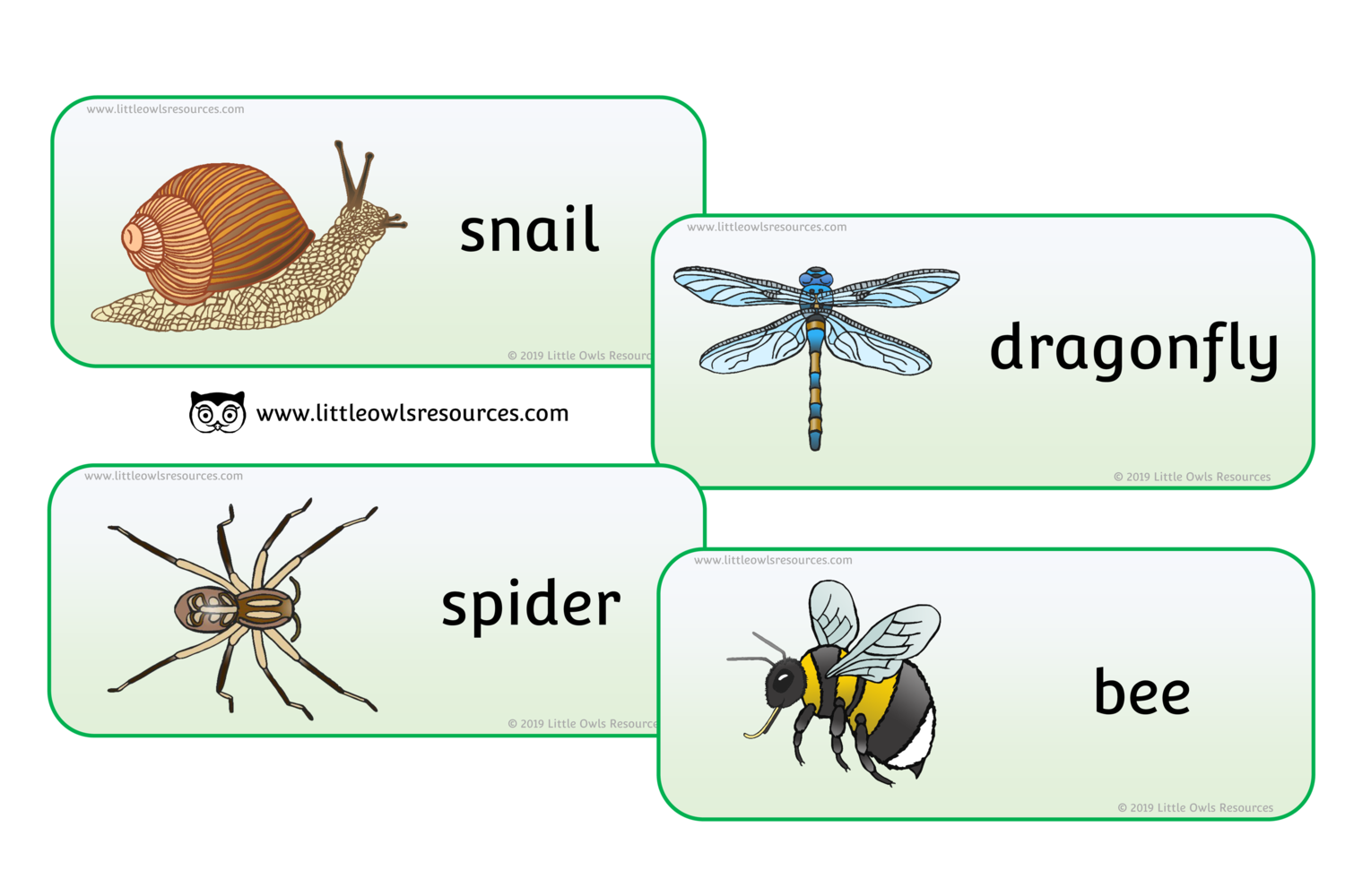 Free Minibeasts Words Printable Early Years Ey Eyfs