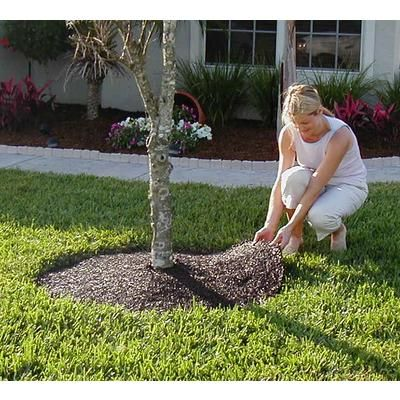 Easy Gardener Products 24 Inch Tree Ring Home Depot Canada Brick Garden Tree Rings Flowering Trees