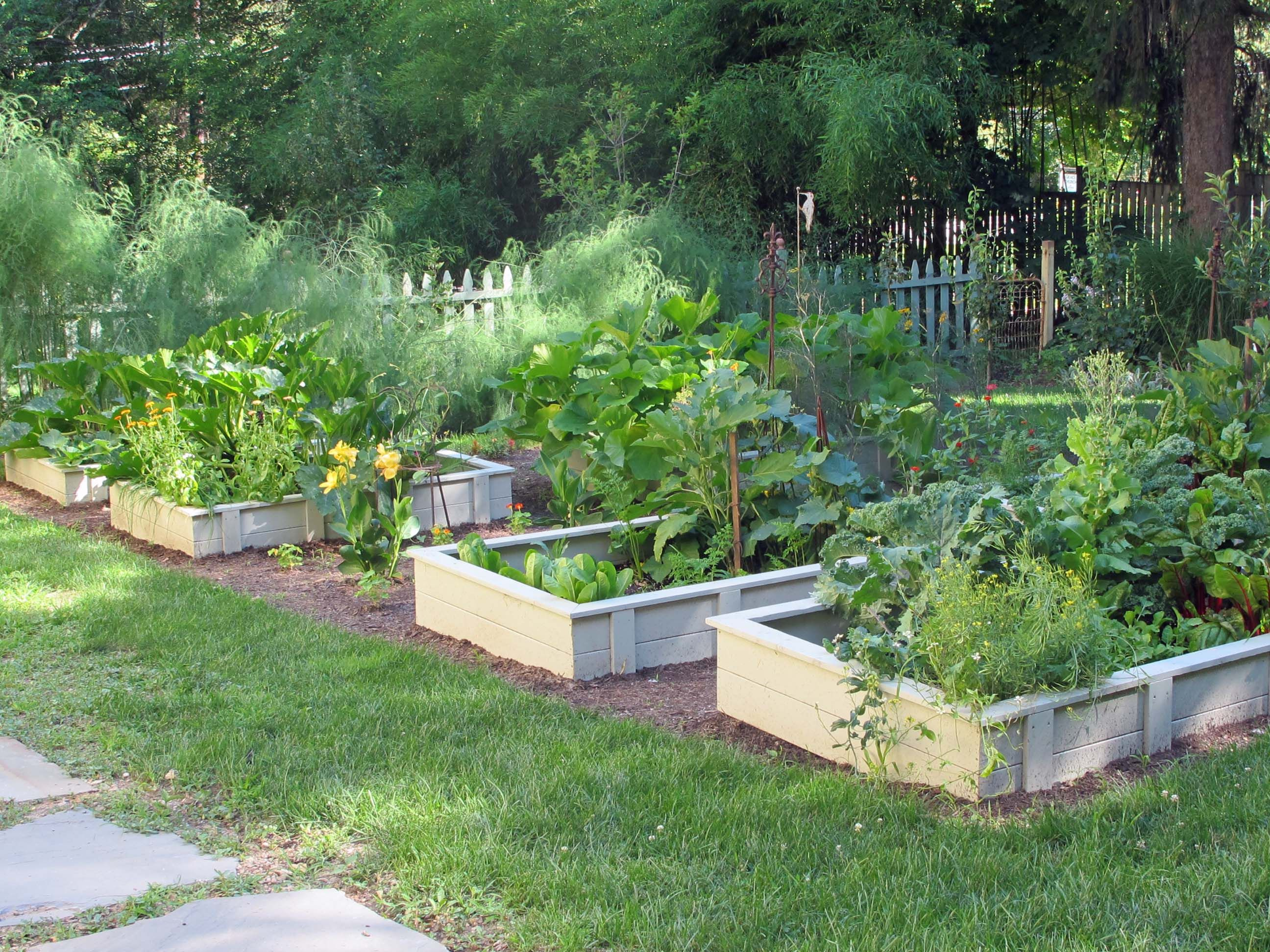 Raised vegetable garden design ideas veg garden beds for Raised veggie garden designs