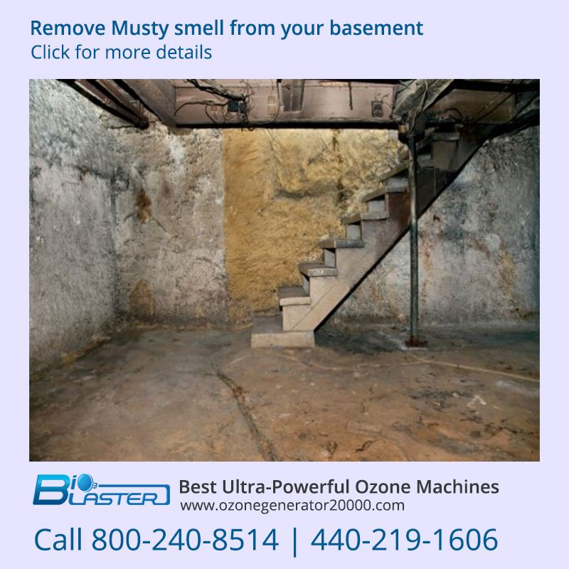 Awesome Basement Smells Musty