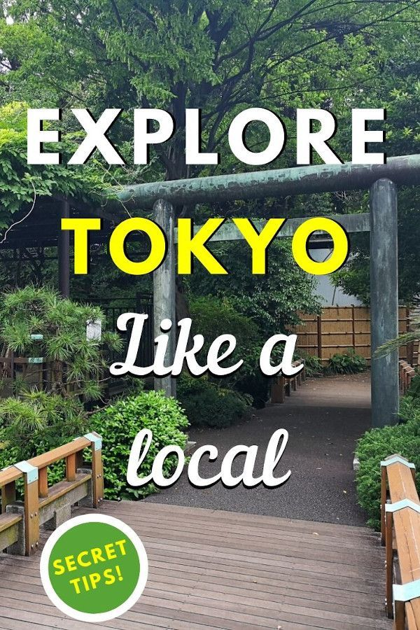 Explore Tokyo like a local with these insider tips for Tokyo. Discover secret unique things to do in Tokyo, Japan from this article. #japan #tokyo #tokyothingstodo #earthsattractions #offthebeatenpath #asia #travel #traveldestinations #earthsattractions