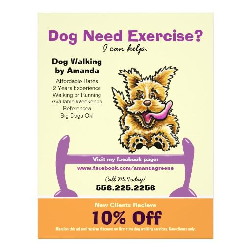 Dog Trainer Training Active Terrier Coupon Ad Flyer Zazzle Com