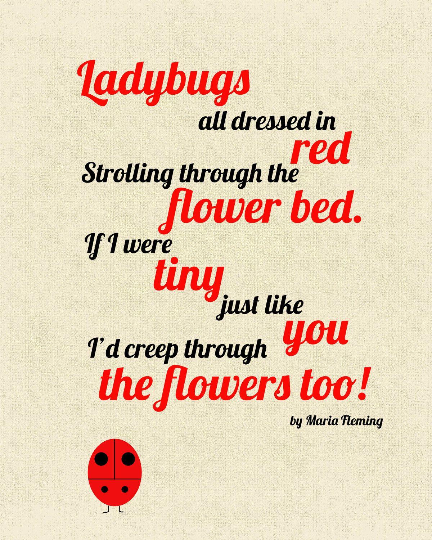 Ladybug Poem - Google Search