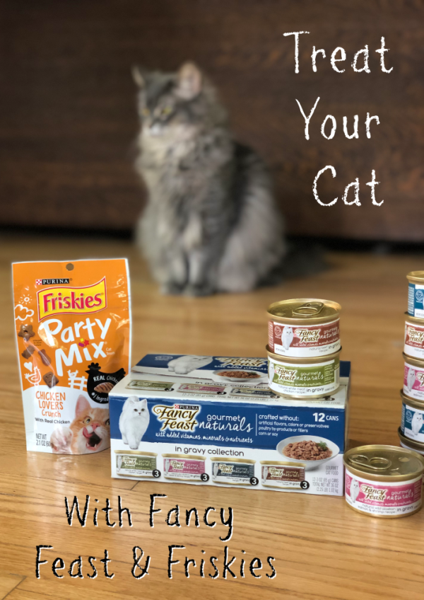 Why Cats Make The Best Co Workers Pet Supplies Plus Friskies Purina Friskies