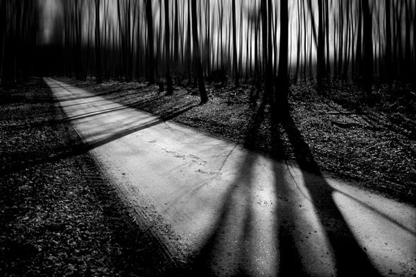 Showcase Of Fineart Photographer Chris Friel In 2020 Black And White Landscape Landscape Photography Abstract Landscape