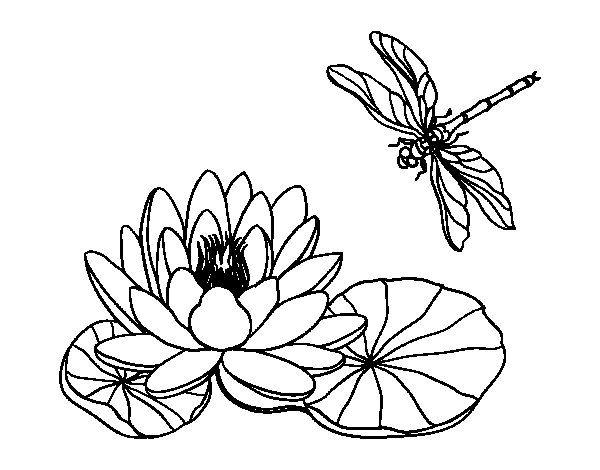Dibujos De Rosas Para Colorear Buscar Con Google Tatoos