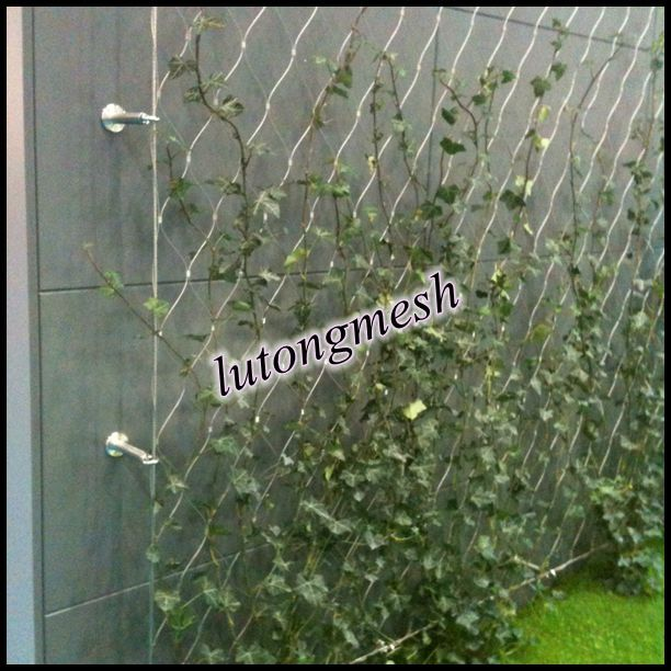 Wire mesh for growing plants decorative wall