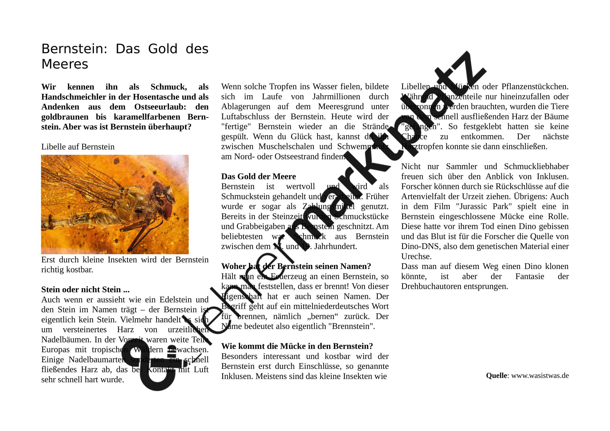 Bernstein Sachtext Unterrichtsmaterial Im Fach Deutsch Books Cover