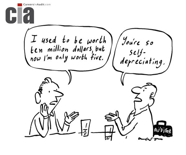Audit Cartoons  Self Depreciating  Audit Cartoons
