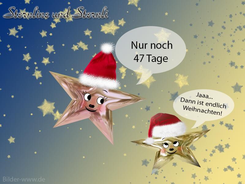 lustige weihnachtsbilder kostenlos