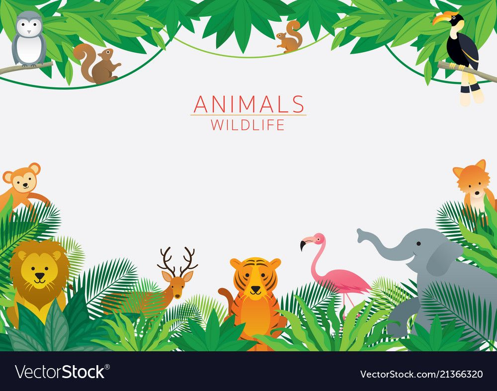 Kids And Cute Cartoon Style Download A Free Preview Or High Quality Adobe Illustrator Ai Eps Pdf And High Res Animals Wild Jungle Cartoon Animal Print Party