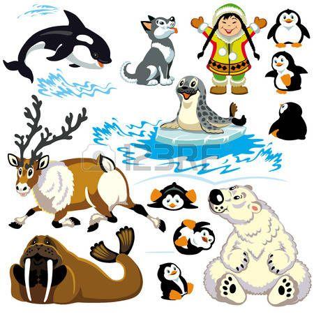 Stock Vector Imagenes De Animales Para Ninos Animales Del Artico Animales De Tundra
