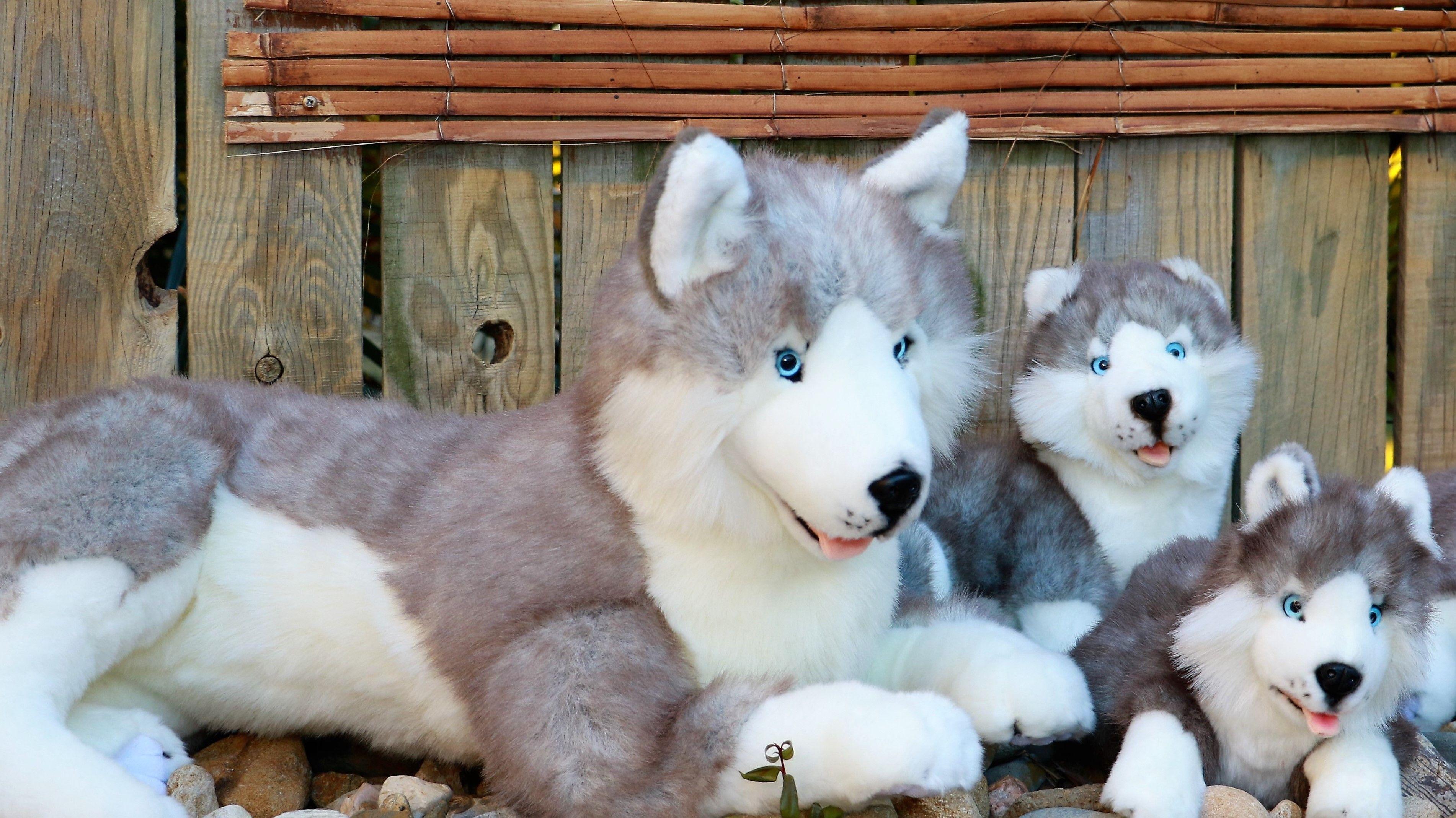 Bocchetta Plush Toys Husky Dog Toy Huskies Stuffed Dog Toys