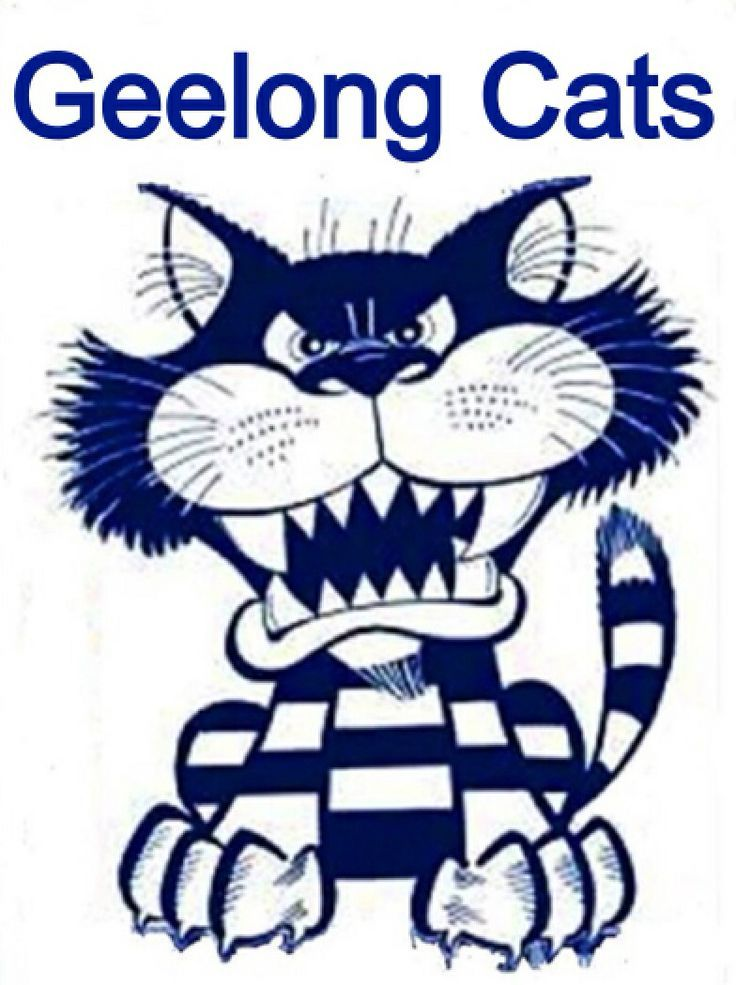 Image Result For Geelong Cats Mascot Geelong Cats Football Geelong Cats Geelong Football