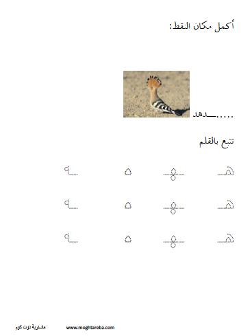 أوراق عمل اللغة العربية حرف الهاء المضموم Homeschool