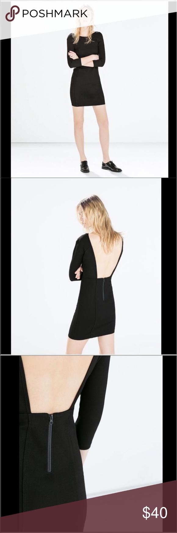 Nwot Zara Black Open Back Dress Zara Black Open Back Dress Zipper In Back Thick Stretch Material Similar Open Back Black Dress Dress Backs Open Back Dresses [ 1740 x 580 Pixel ]