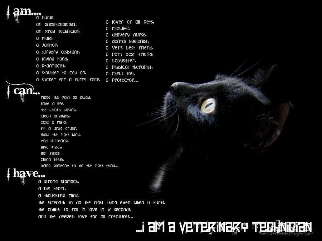 I Am A Veterinary Technician  Vet Tech    Veterinary