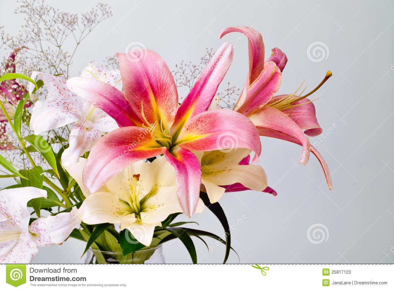 Pink lilies flowers stock flower images pinterest lilies pink lilies flowers izmirmasajfo Image collections