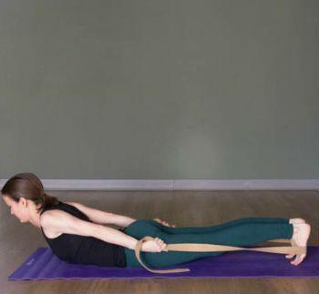 a straplover's compendium practice for the legs