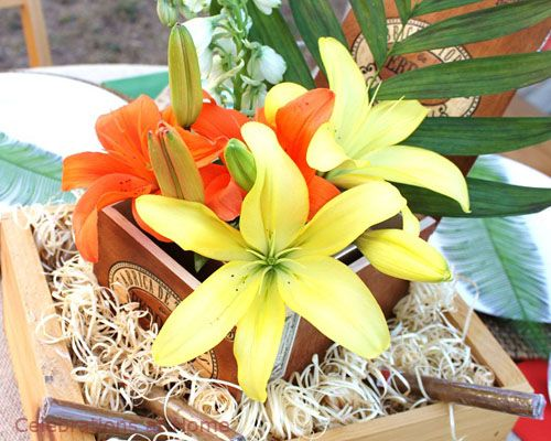 Tropical Flowers In Cigar Boxes For Rehearsal Dinner
