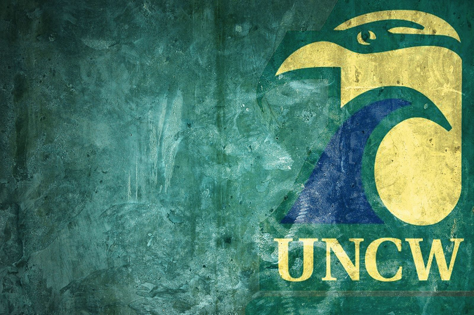We chose to dedicate this #Wallpaper #Wednesday to #UNCW to welcome back all the students and faculty starting classes today - Go Seahawks!