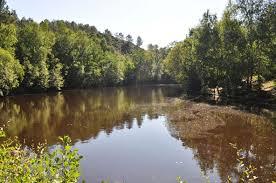 Lac aux fées ou Miroir aux fées, en forêt de Brocéliande