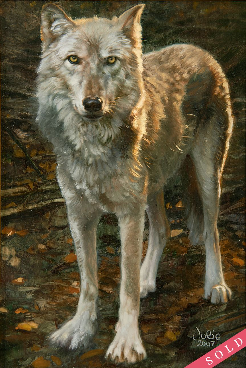 "/""Hidden Secrets/"" Bonnie Marris Wolves Giclee Print"