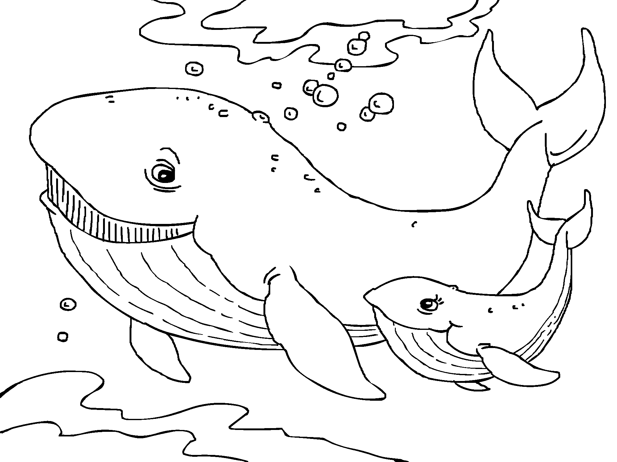Whales Coloring Page In