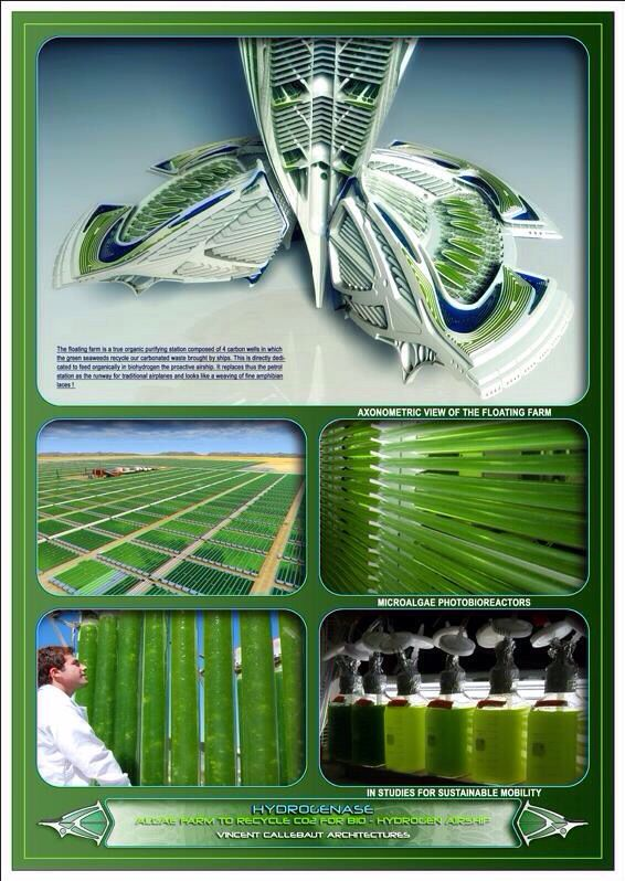 Awarded in the top 50 of the green planet architects vincent callebaut architectures is referenced as the best eco prospective and visionary architectural