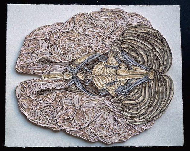 Quilled Anatomy by Sarah Yakawonis