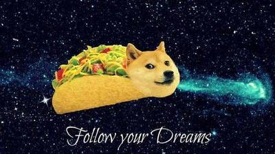 Follow Your Dreams Taco Doge Wallpaper Xd Funny Pillows
