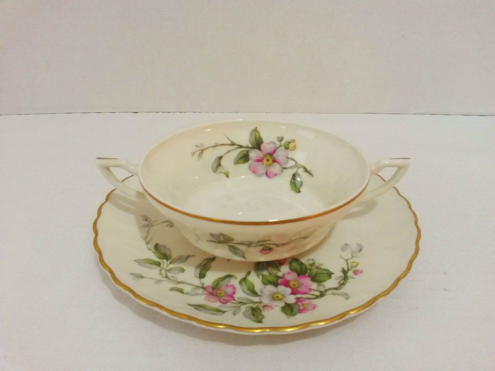 Syracuse China Soup Bowl & Plate Apple Blossom - 2 Handle Cup with Dish  USA #Syracuse ..... Visit all of our online locations ..... (www.stores.eBay.com/variety-on-a-budget) ..... (www.amazon.com/shops/Variety-on-a-Budget) ..... (www.etsy.com/shop/VarietyonaBudget) ..... (www.bonanza.com/booths/VarietyonaBudget ) .....(www.facebook.com/VarietyonaBudgetOnlineShopping)