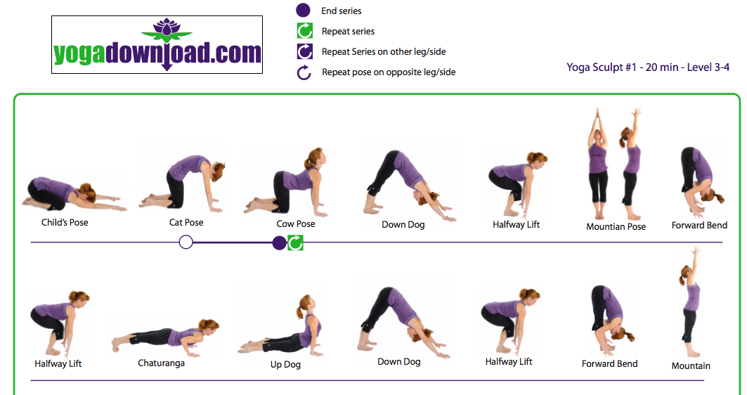 Yoga Poses And Names