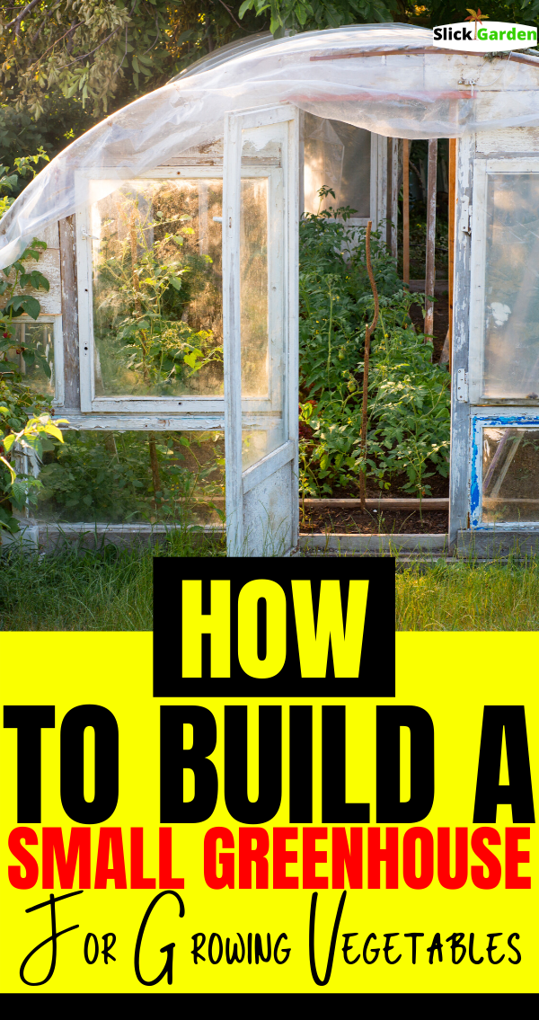 How To Build A Small Greenhouse For Vegetables In 2020 Small Greenhouse Greenhouse Large Greenhouse